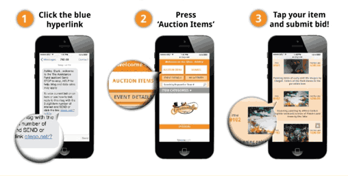 Screenshot showing location of the bid hyperlink and auction items
