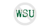 "Wright State Athletics Violation - don't depict ""WSU"" in anything other than the athletic font"