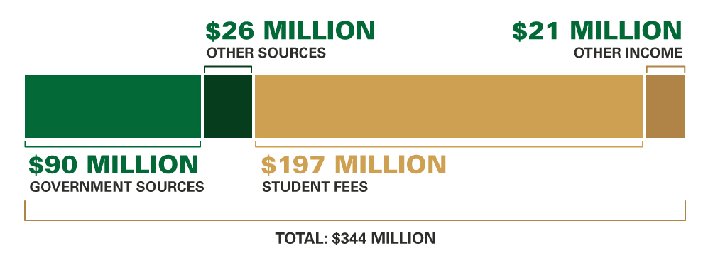 University Income (Budgeted), 2016–17: State Appropriations $90 million; Other Sources $26 million; Student Fees $197 million; Other Income $21 million