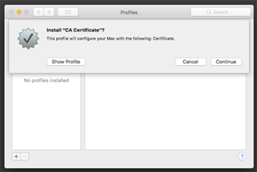 screen capture of the casper ca certificate install window