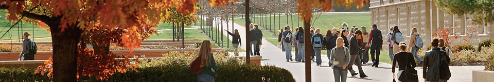Student's Walking Acroos Campus