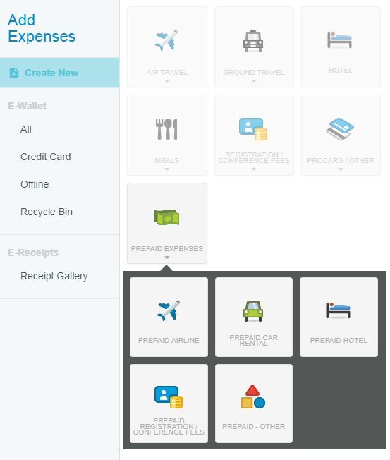 Screenshot of prepaid expense tile and sub-category expense tiles