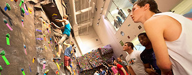 photo of students climbing and observing the climbing wall