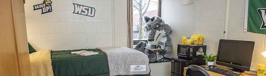 photo of rowdy in a hamilton hall dorm room