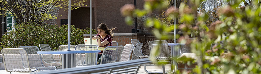 photo of a person using a laptop on campus