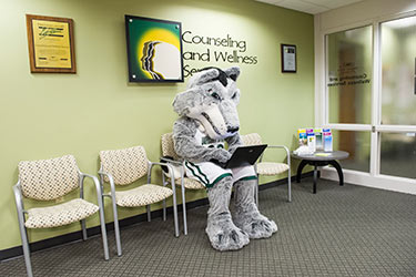 photo of rowdy in the counseling and wellness office