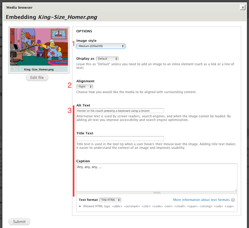 Screenshot of Media Upload embed options tab