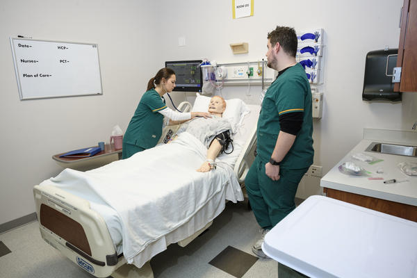 Students working in nursing lab