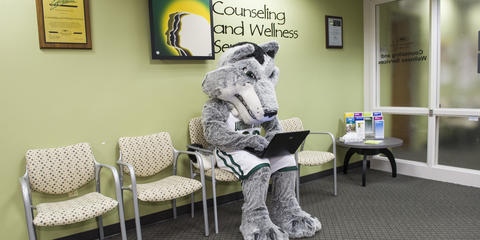 Counseling and Wellness