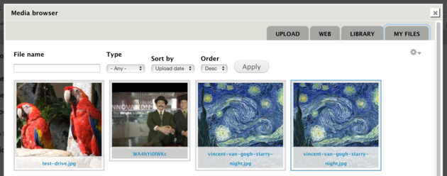 Screenshot of Media Upload Library tab: Filters for file name and type, and thumbnails of assets