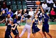 Womens basketball. vs Detroit