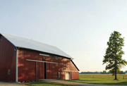 Rural countryside scene