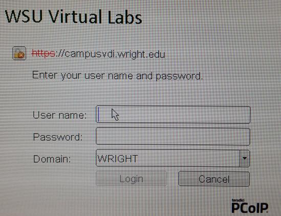 wsu_virtual.jpg
